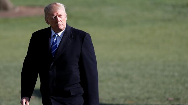 U.S. President Donald Trump walks as he returns to the White House after a trip to Lewisburg, West Virginia, in Washington D.C., U.S - Sputnik International