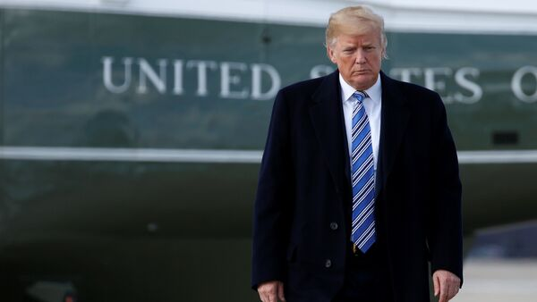 U.S. President Donald Trump walks to Air Force One as he departs for Palm Beach, Florida, from Joint Base Andrews in Maryland, U.S - Sputnik International