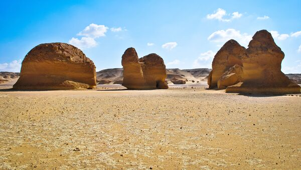 Палеонтологические находки Вади-аль-Хитан в Египте  - Sputnik International