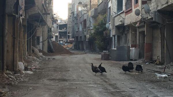 Tension Escalating Near Damascus as Syrian Army Battles Militants - Sputnik International