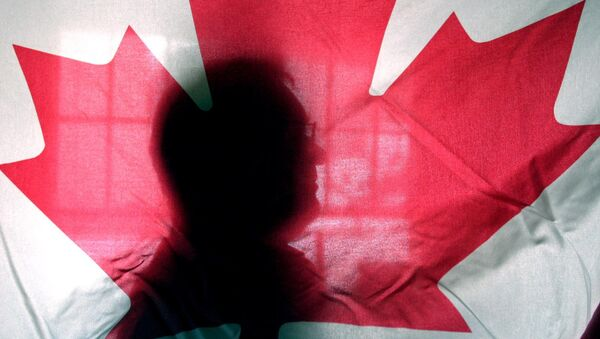 Andre Senecal, silhouetted behind a Canadian flag, Feb. 10, 2004, has been trying to get Americans to understand that Canada is more than polar bears, red-coated constables, hockey and long winters, introducing students to some of the intricacies of the European style of government. - Sputnik International