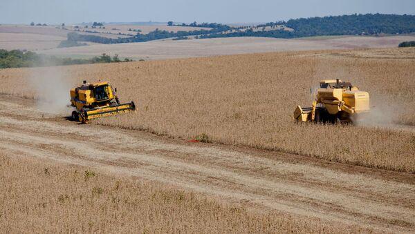 Soya bean harvest in Brazil. - Sputnik International