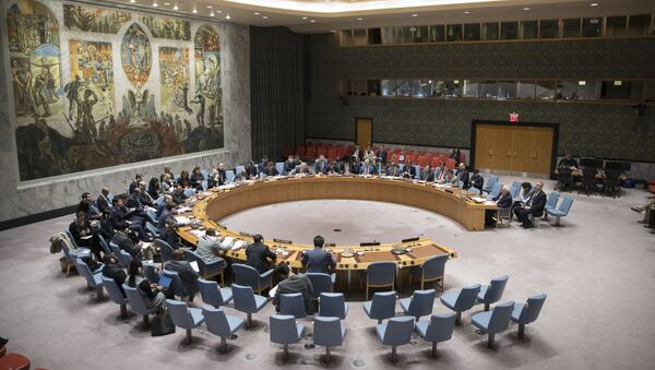 The United Nations Security Council meeting - Sputnik International