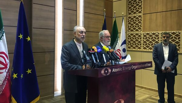 Iran's nuclear chief Ali Akbar Salehi speaks during a joint press conference with European Commissioner for Energy and Climate, Miguel Arias Canete, in Tehran, Iran, May 19, 2018 - Sputnik International
