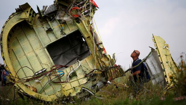 A Malaysian air crash investigator inspects the crash site of Malaysia Airlines Flight MH17, near the village of Hrabove (Grabovo) in Donetsk region, Ukraine, July 22, 2014 - Sputnik International