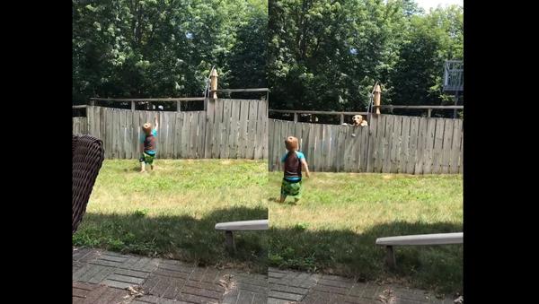 Toddler and Golden Retriever Enjoy Friendly Game of Catch Over Fence - Sputnik International