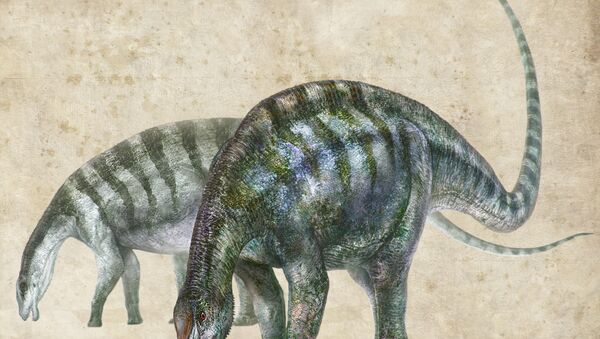 An artist's rendering of Lingwulong shenqi, a newly discovered dinosaur unearthed in northwestern China, appears in this image provided July 24, 2018. - Sputnik International