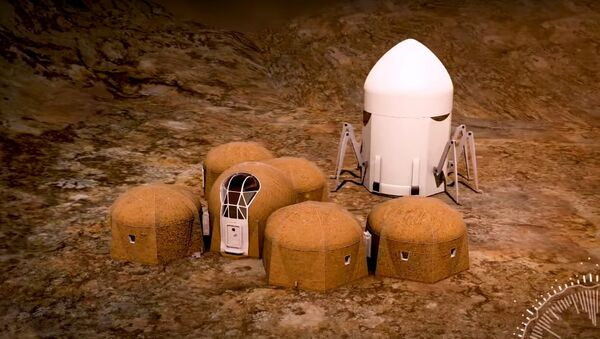 Team Zopherus - Phase 3: Level 1 of NASA's 3D-Printed Habitat Challenge - Sputnik International
