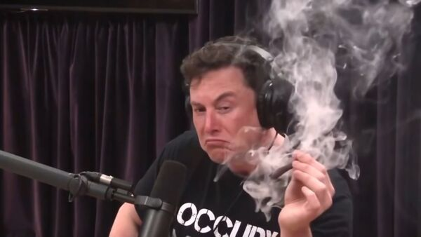 Elon Musk smokes a blunt with Joe Rogan - Sputnik International