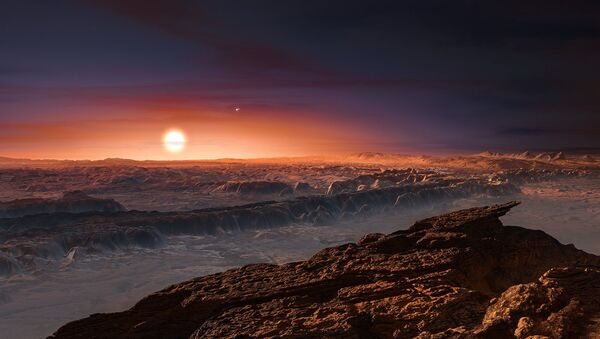 An artist's impression of the view from Proxima Centarui b, a newly discovered Earth-sized planet just four light-years away. It is unclear if there is intelligent life in the universe, but searches continue to find Earth-sized planets in the habitable zones of their respective stars - Sputnik International