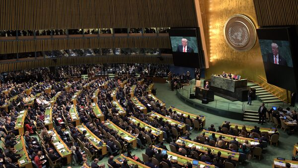 United States President Donald Trump speaks at the United Nations General Assembly in New York. - Sputnik International