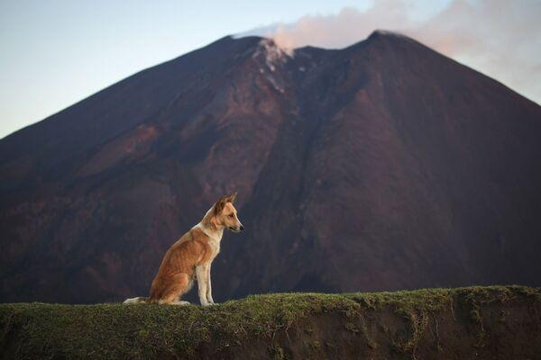 Enter if You Dare: 10 Most Perilous Hiking Trails in World - Sputnik International