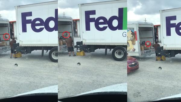 Service with a Spiral: Fed Up FedEx Employee Flings Parcels Into Truck - Sputnik International