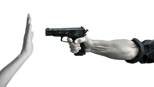 Gun - Sputnik International