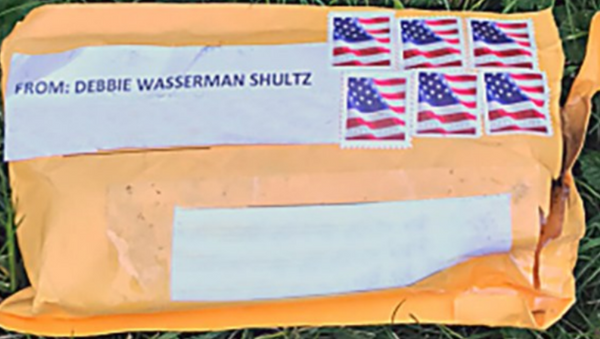 Exterior of one of the suspicious packages. Addresses have been removed to protect privacy. - Sputnik International