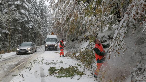 Workers cut trees to avoid branches falling on the road during snowfall in the commune on Ceyssat, in the Auvergne region, central France, on October 29, 2018 - Sputnik International