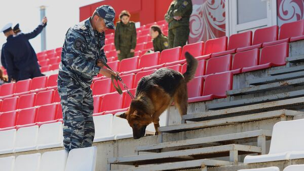 A canine expert and a service dog examine the stadium at the canine teams competition in memory of police captain Fedor Khikhlushka at Virazh motor racing venue in Belgorod Region. Winners of the competition will be part of public order police during the 2018 FIFA World Cup - Sputnik International