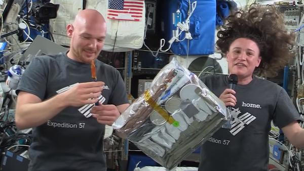 Thanksgiving at the International Space Station - Sputnik International