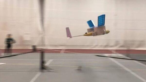 MIT 'ion-powered' aircraft makes first successful light - Sputnik International