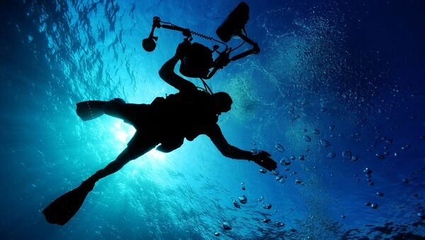 Under water - Sputnik International
