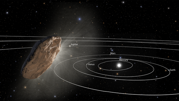 This illustration shows 'Oumuamua racing toward the outskirts of our solar system. As the complex rotation of the object makes it difficult to determine the exact shape, there are many models of what it could look like. - Sputnik International