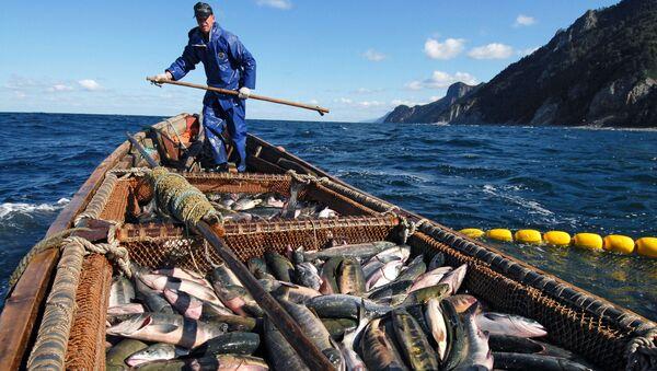 Fishermen are Trying to Catch Salmon Near the Okhotsk Sea Embankment in Kunashir Island - Sputnik International