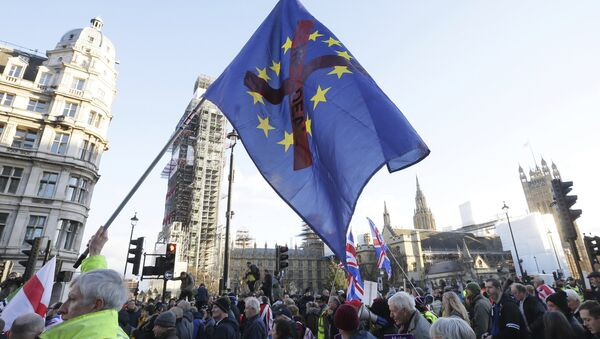 Demonstrators hold placards and flags at the Brexit Betrayal Rally, a pro-Brexit rally, outside the Houses of Parliament in London, Sunday Dec. 9, 2018 - Sputnik International