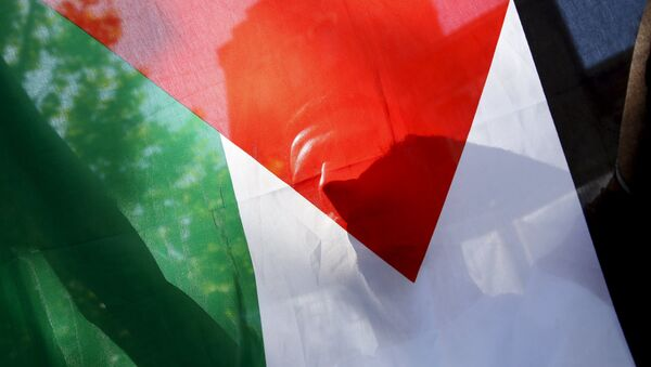 A Palestinian refugee holds the flag of Palestine during a protest in Madrid, Spain, July 21, 2015 - Sputnik International