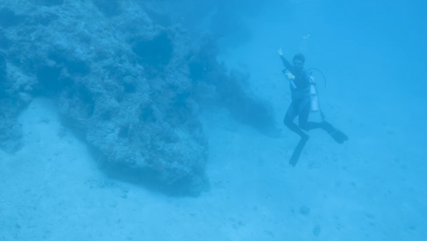 Local diver points toward aircraft suspected of being Amelia Earhart's Lockheed Electra 10E - Sputnik International