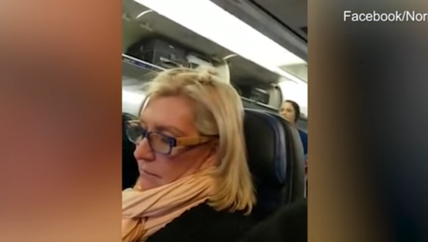 US Traveler Kicked Off Flight for Rant About Sitting Next to 'Two Big Pigs' - Sputnik International