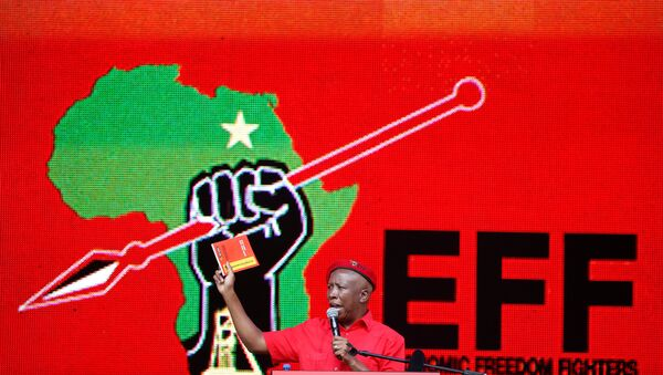 President of South Africa's radical left-wing party, the Economic Freedom Fighters (EFF), Julius Malema, holds a copy of the party's election manifesto in Soshanguve, near Pretoria, South Africa February 2, 2019 - Sputnik International