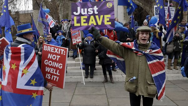 A pro-leave supporter, right, hods a placard in front of a group of pro-remain supporters during demonstrations in London, Tuesday, Jan. 29, 2019. Britain's Parliament is set to vote on competing Brexit plans, with Prime Minister Theresa May desperately seeking a mandate from lawmakers to help secure concessions from the European Union. - Sputnik International