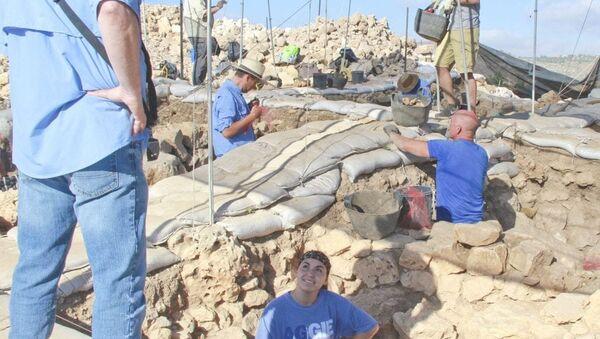 Dr Scott Stripling oversees archaeological work - Sputnik International