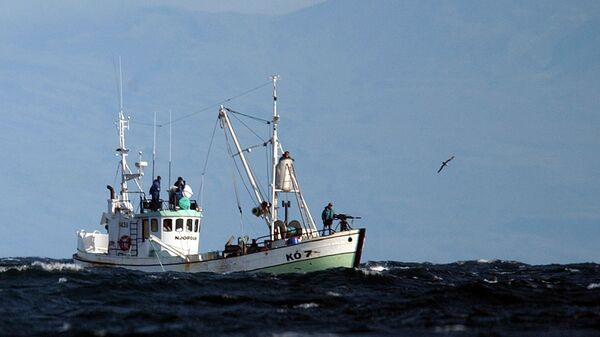 The whaling boat 'Njordur', prepares to fire a harpoon at a minke whale, Friday, Aug. 22, 2003 in the Atlantic Ocean off the west coast of Iceland. The Icelandic government has given permission for 38 whales to be caught for scientific reasons within the next two months. - Sputnik International