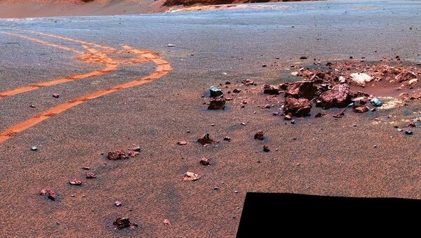 image from NASA Mars rover Opportunity of the Martian surface (NASA) - Sputnik International