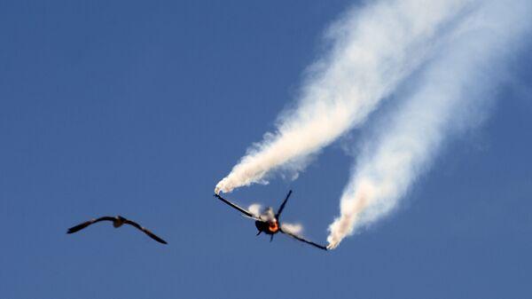 Pakistani Air Force F-16 fighter jet - Sputnik International