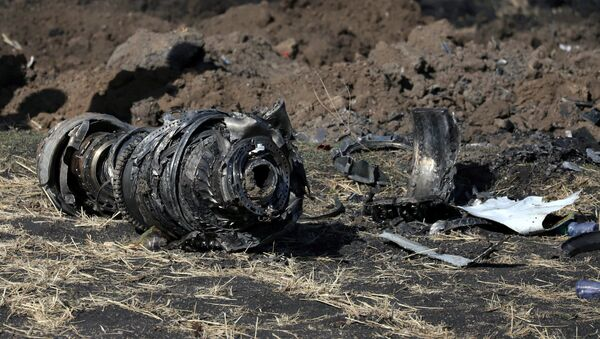 Engine parts are seen at the scene of the Ethiopian Airlines Flight ET 302 plane crash, near the town of Bishoftu, southeast of Addis Ababa, Ethiopia March 11, 2019 - Sputnik International