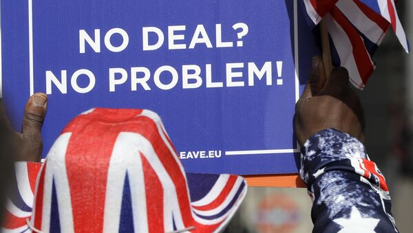 A pro-Brexit leave the European Union supporter takes part in a protest outside the House of Parliament in London, Wednesday, March 13, 2019. - Sputnik International