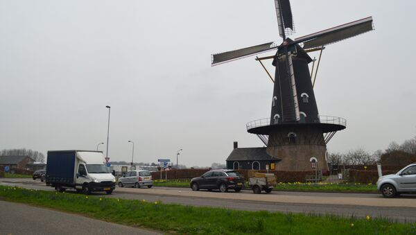 Dutch provincial election - Sputnik International
