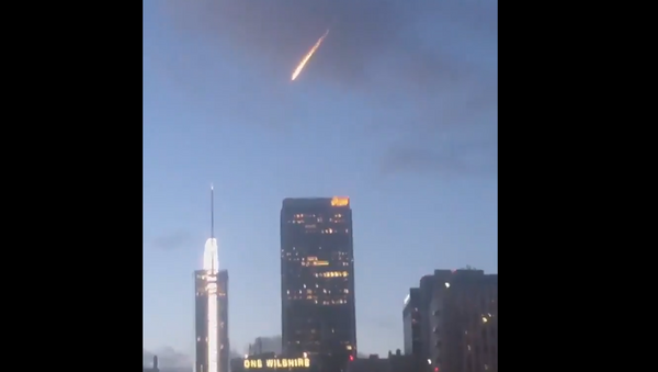 'What an Alien Would Say': Netizens Clap Back at LAPD's 'Not an Invasion' Tweet - Sputnik International