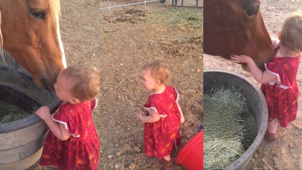 Horses Receive Hugs, Good Night Kisses from Toddler - Sputnik International
