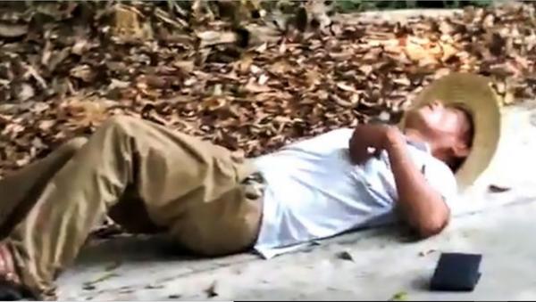 Man Bitten, Killed by King Cobra While Posing for Photo - Sputnik International