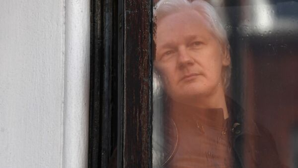 In this file photo taken on May 19, 2017, Wikileaks founder Julian Assange peers through the window prior to speaking on the balcony of the Embassy of Ecuador in London - Sputnik International