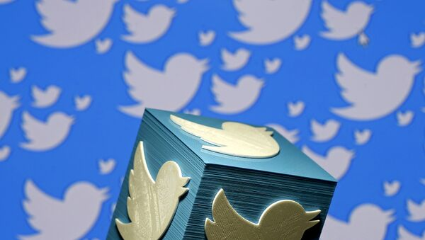 A 3D-printed logo for Twitter is seen in this picture illustration made in Zenica, Bosnia and Herzegovina on January 26, 2016 - Sputnik International