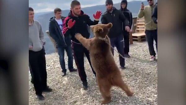 Нурмагомедов снова поборолся с медвежонком  UFC  ММА - Sputnik International