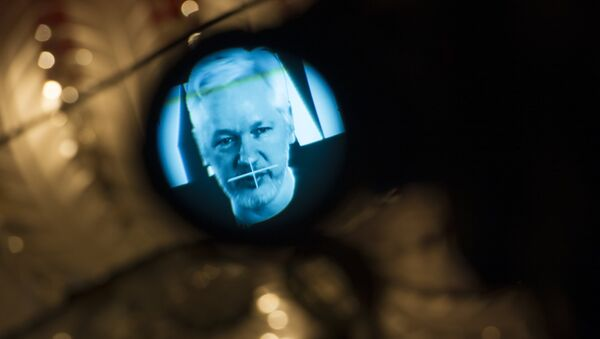 Julian Assange, founder of the online leaking platform WikiLeaks, is seen through the eyepeace of a camera as he is displayed on a screen via a live video connection during a press conference on the platform's 10th anniversary on October 4, 2016 in Berlin - Sputnik International