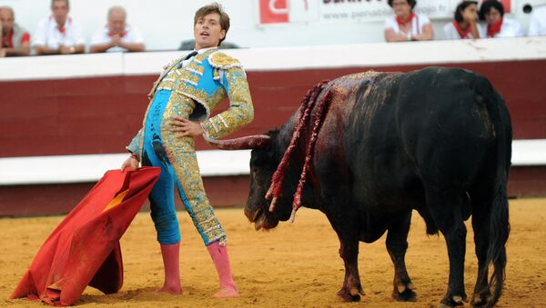 French matador Juan Leal reacts next to a Jandilla bull during the festival of Dax, southwestern France, on August 13,2015 - Sputnik International