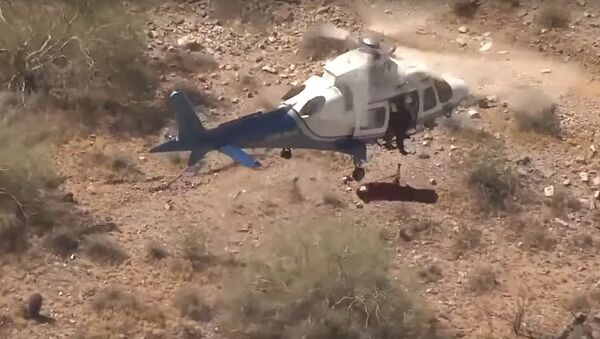 Video shows helicopter rescue of injured hiker - Sputnik International