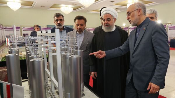 Iranian President Hassan Rouhani (2nd L) listening to head of Iran's nuclear technology organisation Ali Akbar Salehi (R) during the nuclear technology day in Tehran - Sputnik International