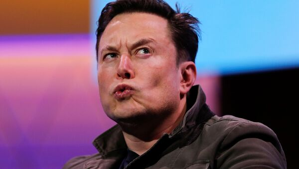 SpaceX owner and Tesla CEO Elon Musk reacts during a conversation with legendary game designer Todd Howard (not pictured) at the E3 gaming convention in Los Angeles, California, U.S., June 13, 2019 - Sputnik International